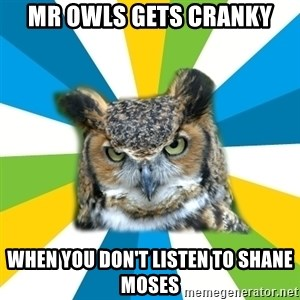 Old Navy Owl - mr owls gets cranky when you don't listen to shane moses