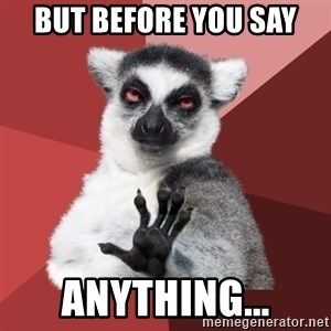 Chill Out Lemur - But before you say anything...
