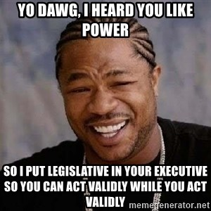 Yo Dawg - yo dawg, i heard you like power so i put legislative in your executive so you can act validly while you act validly