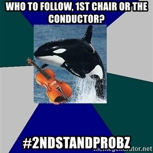 The Orchestra Orca - who to follow, 1st chair or the conductor? #2ndStandProbz
