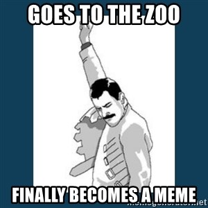 Freddy Mercury - GOES TO THE ZOO FINALLY BECOMES A MEME