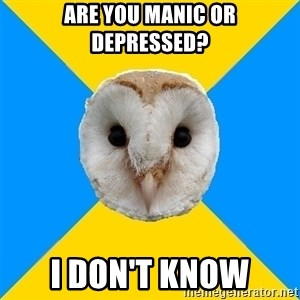 Bipolar Owl - are you manic or depressed? i don't know