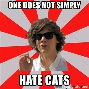 One Does Not Simply Harry S. - One does not simply hate cats
