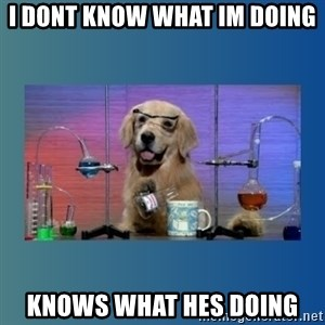 Chemistry Dog - I dont know what im doing knows what hes doing
