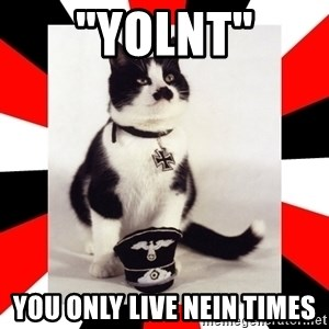 """Hitler Cat - """"yolnt"""" You only live nein times"""