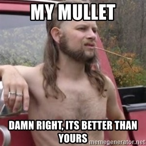 Stereotypical Redneck - My mullet damn right, its better than yours