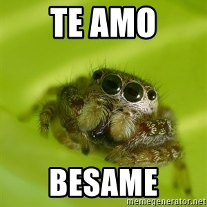 The Spider Bro - te amo besame