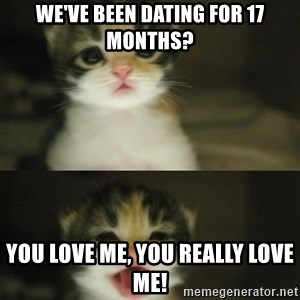 Adorable Kitten - We've been dating for 17 months? You love me, you really love me!