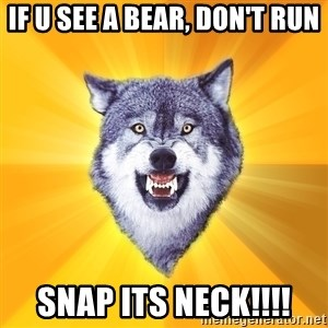 Courage Wolf - if u see a bear, don't run snap its neck!!!!