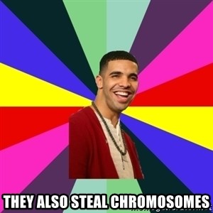 Down Syndrome Drake - they also steal chromosomes