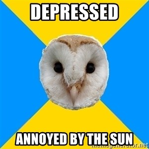 Bipolar Owl - depressed annoyed by the sun