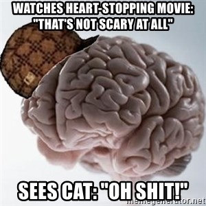 "Scumbag Brain - Watches heart-stopping movie: ""That's not scary at all"" sees cat: ""OH SHIT!"""