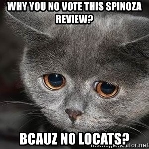 sad cat - why you no vote this spinoza review? bcauz no locats?