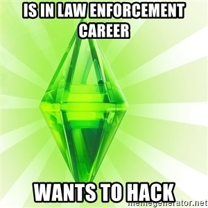 Sims - iS IN Law enforcement CAREER  wants to hack