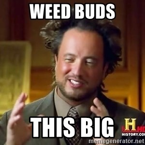 Ancient Aliens - weed buds this big
