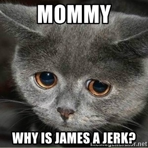 Sad Cute Cat - Mommy Why is james a jerk?