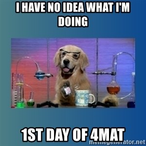 Chemistry Dog - I have no idea what I'm doing 1st day of 4mat
