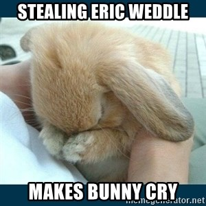 Bunny cry - stealing eric weddle makes bunny cry