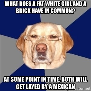 Racist Dog 1 - What does a fat white girl and a brick have in common? At some point in time, both will get layed by a mexican