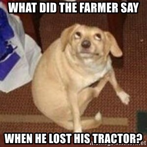 Oh You Dog - What did the farmer say When he lost his tractor?