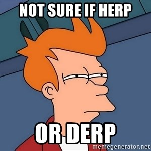 Futurama Fry - not sure if herp or derp