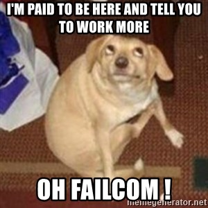 Oh You Dog - I'm paid to be here and tell you to work more Oh Failcom !