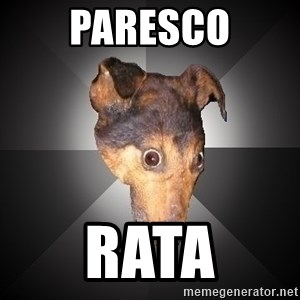 Depression Dog - paresco rata