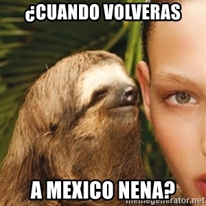 The Rape Sloth - ¿cuando volveras a mexico nena?
