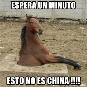 Hole Horse - espera un minuto esto no es china !!!!