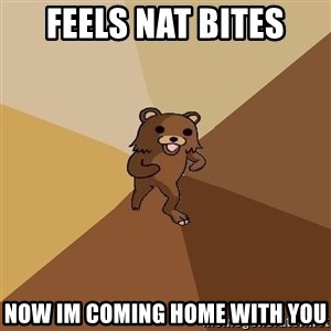 Pedo Bear From Beyond - FEELS NAT BITES NOW IM COMING HOME WITH YOU