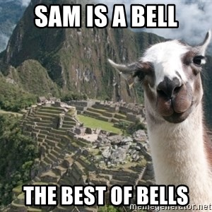 Bossy the Llama - sam is a bell the best of bells