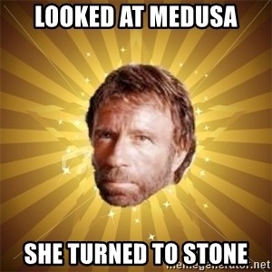 Chuck Norris Advice - LoOked at medusa She turned to stone