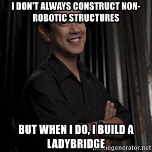 Most Interesting Geek In The World - I don't always construct non-robotic structures but when I do, i build a ladybridge