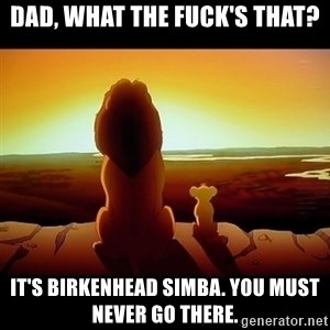 Simba - dad, what the fuck's that? it's birkenhead simba. you must never go there.