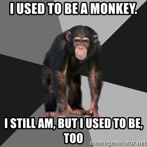 Drunken Monkey - I USED TO BE A MONKEY. I STILL AM, BUT I USED TO BE, TOO