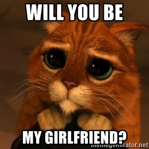 Shrek Cat V1 - Will you be  my girlfriend?