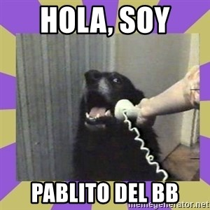 Yes, this is dog! - hola, soy  pablito del bb