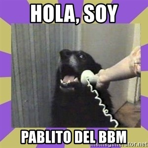 Yes, this is dog! - hola, soy pablito del bbm