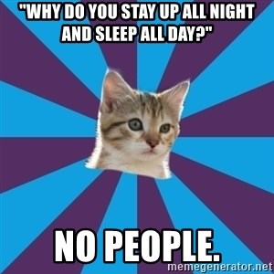 """Autistic Kitten - """"WHY DO YOU STAY UP ALL NIGHT AND SLEEP ALL DAY?"""" NO PEOPLE."""