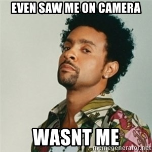 Shaggy. It wasn't me - even saw me on camera wasnt me