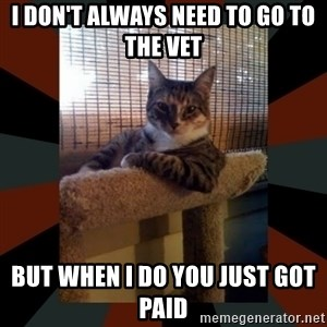 The Most Interesting Cat in the World - I don't always need to go to the vet  but when i do you just got paid