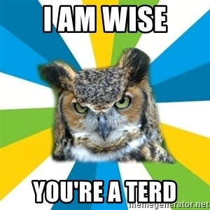 Old Navy Owl - I am wise You're a terd