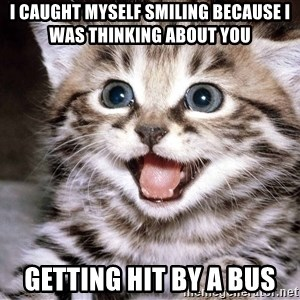 HAPPY KITTEN - I caught myself smiling because I was thinking about you Getting hit by a bus