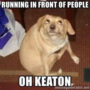 Oh You Dog - running in front of people Oh Keaton