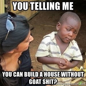 Skeptical 3rd World Kid - You telling me you can build a house without goat shit?