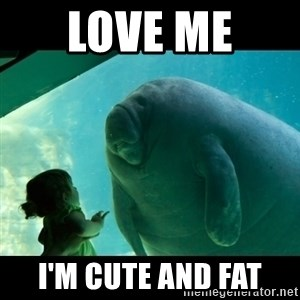 Overlord Manatee - love me  i'm cute and fat