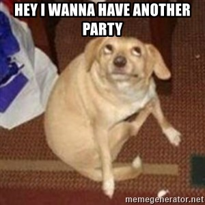 Oh You Dog - Hey I wanna have another party