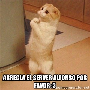 Sorry Cat - ARREGLA EL SERVER ALFONSO POR FAVOR :3