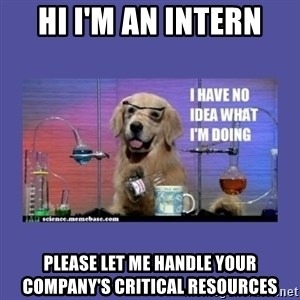 I don't know what i'm doing! dog - HI I'm an intern PLEASE LET ME HANDLE your company's critical resources
