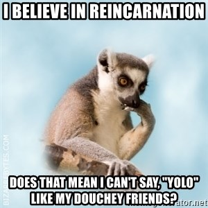 """Lamenting Lemur - I believe in reincarnation Does that mean I can't say, """"yolo"""" like my douchey friends?"""